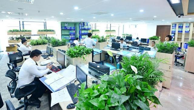 Yếu tố xanh  mang lại nguồn năng lực tích cực cho không gian làm việc của bạn