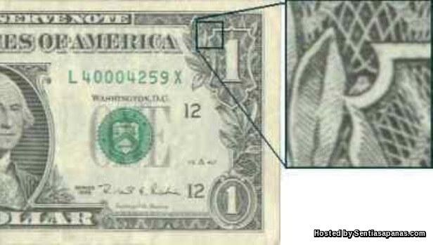 dollar_owl