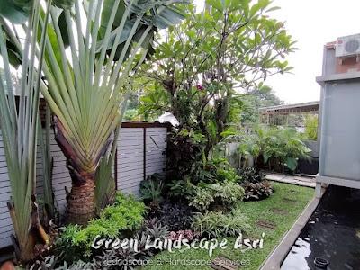 Tukang Taman Tegal - Jasa Pembuatan Taman di Tegal Jawa Tengah