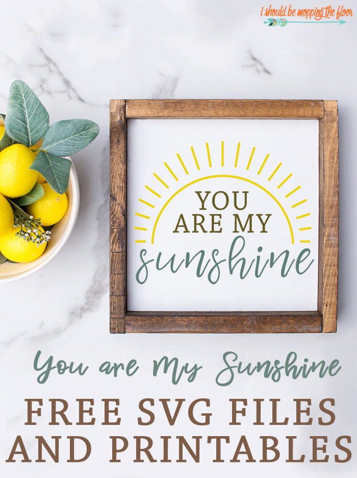 Free You are My Sunshine SVG and Matching Printables