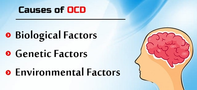 what causes ocd cause obsessive compulsive disorder