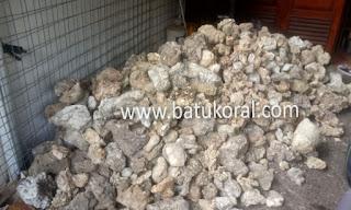 batu karang resapan