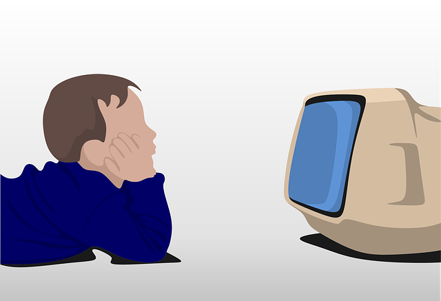 Uses and abuses of the Television - Paragraph