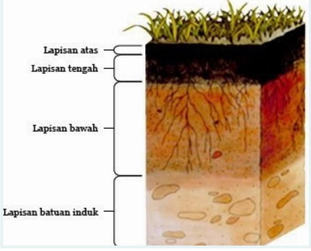 5 Lapisan tanah