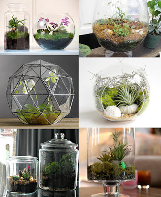 Ideas DIY : Terrarios