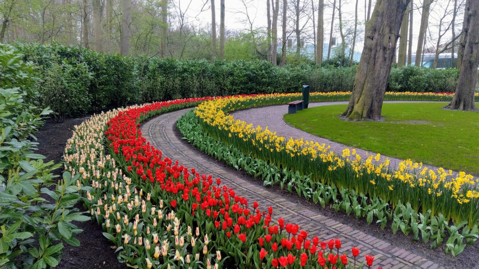 Jardines y parques del mundo cerrados COVID-19 y festivales de plantas, flores y jardín cancelados