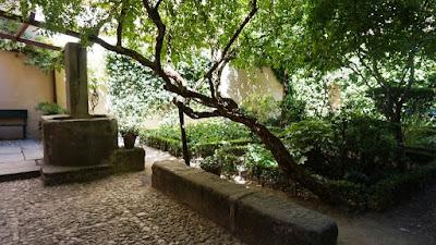 Huerto y jardín de la Casa Museo Lope de Vega
