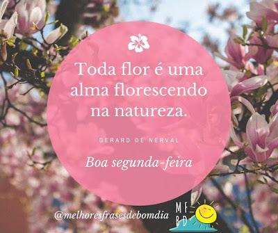 Toda flor é uma alma florescendo na natureza.  Boa segunda-feira.