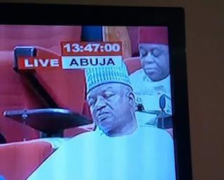 Nigerian senator sleeps durin Plenary session