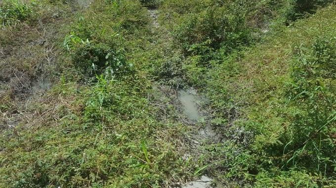 Contra o lançamento de dejetos do Hospital Macroregional de Caxias no Riacho da Pampulha, afluente do Rio Itapecuru
