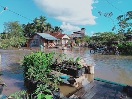 Nunukan Terendam Banjir,  1.568 jiwa terdampak