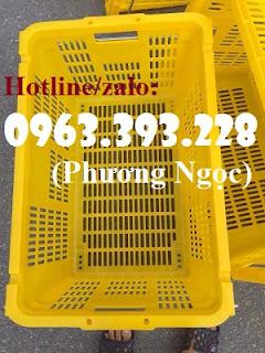 Sóng nhựa rỗng có quai xách, sóng nhựa HS011, sọt nhựa đựng nông sản Sot-nhua-rong-thanh-long-hs011-gia-tot-1555484658%2B%25282%2529