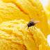 Πώς να κρατήσεις τις μύγες μακριά από το σπίτι και το τραπέζι