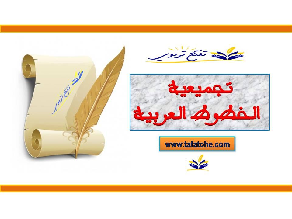 تجميعية الخطوط العربية