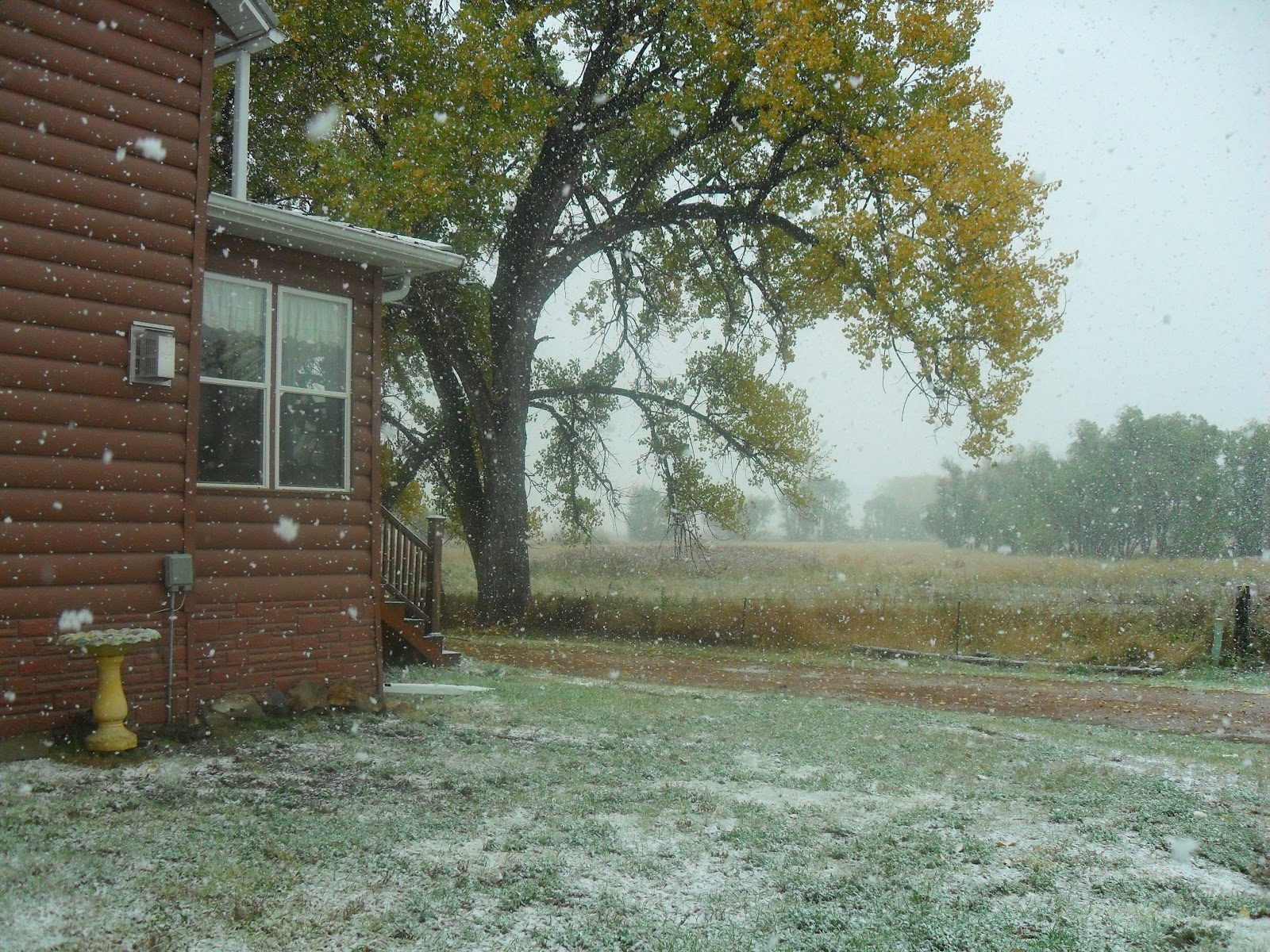 October Snow Blogging >> Her Peculiar Life I Took A Quick Break From My Blogging Break