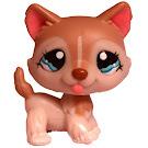 Littlest Pet Shop Large Playset Husky (#1012) Pet