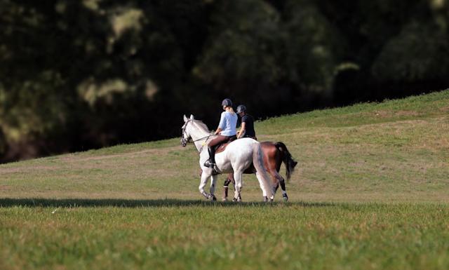 6 Manfat Berkuda Yang Jarang Di Detahui Orang