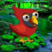 Big Red Angry Bird Escape