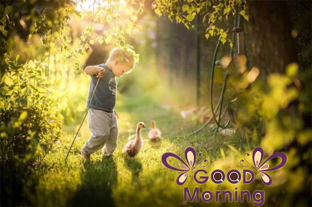 Best GOOD MORNING IMAGE DOWNLOAD with love good morning