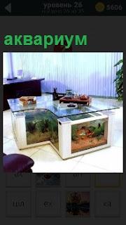 В большой и светлой комнате в качестве стола стоят несколько аквариумов с рыбами внутри