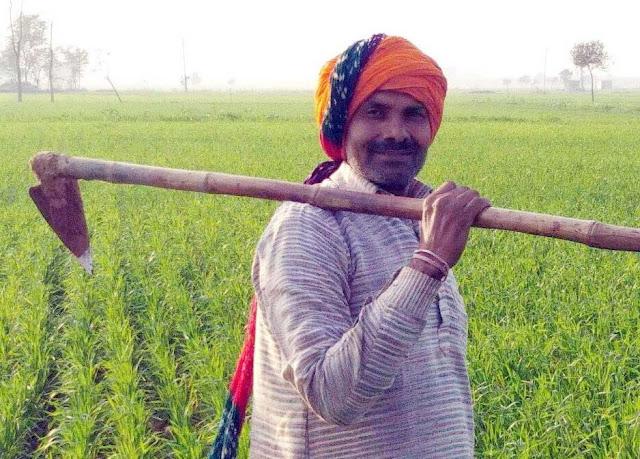 Faridabad is witnessing the 'organic farming' of Mahendra Sharma of village Aruya