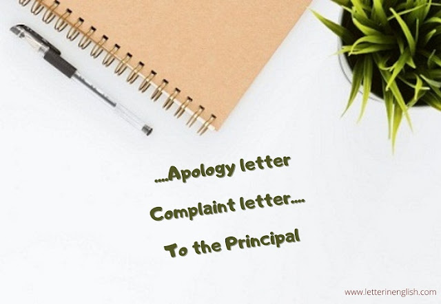 apology letter to principal