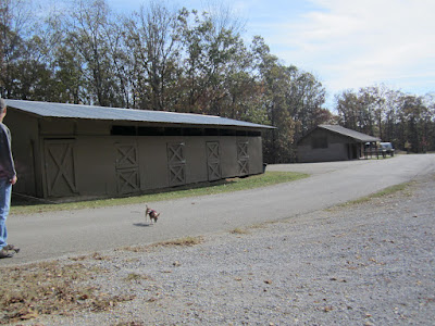 Trace State Park stables