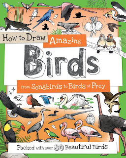 How to Draw Amazing Birds: From Songbirds to Birds of Prey