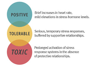 The three types of stress: positive, tolerable, and toxic. Information in the image is explained below