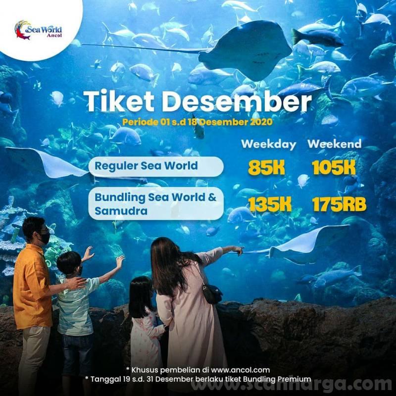 Promo Sea World Ancol Harga Spesial Tiket Masuk mulai dari Rp 85.000*