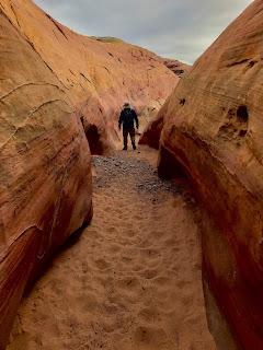 Pink Canyon, 2020