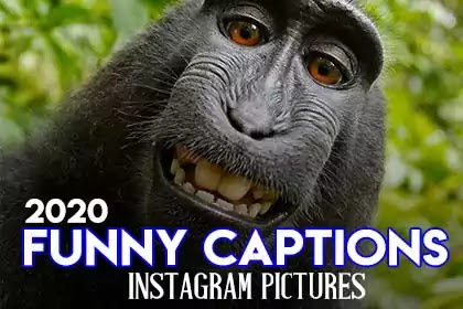 Finding for some funny Instagram captions for pictures to use? you've got come to the right place. We list an enormous selection of the funniest captions for Instagram pic and photos to use.