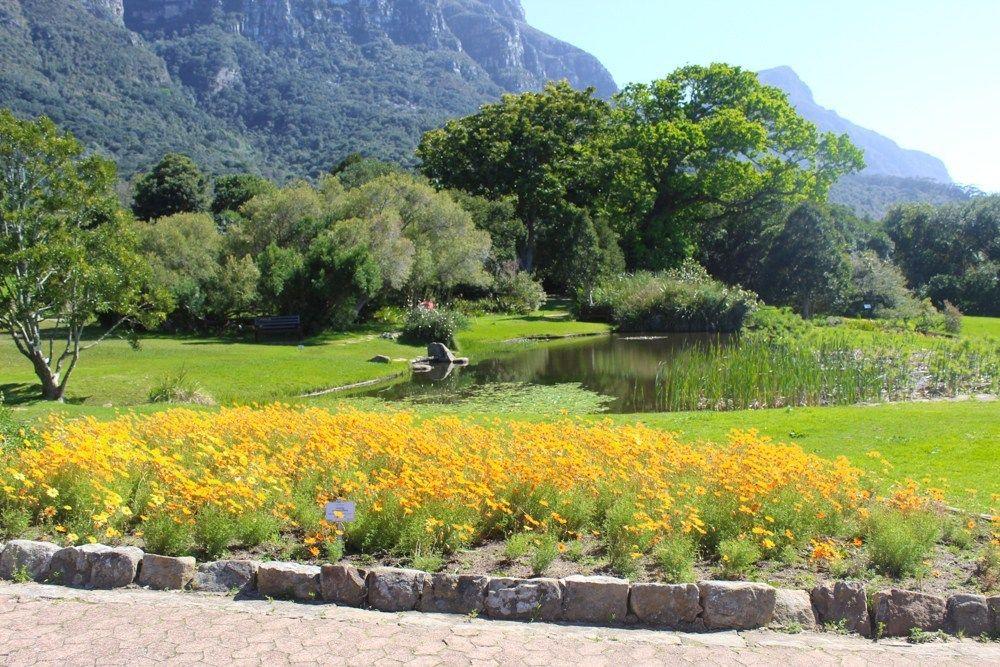 Национальный ботанический сад Кирстенбоша в Кейптауне