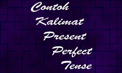 Contoh Kalimat Present Perfect Tense Dengan Arti dan Materinya