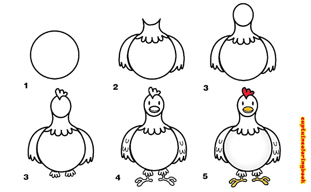 Drawing Chicken