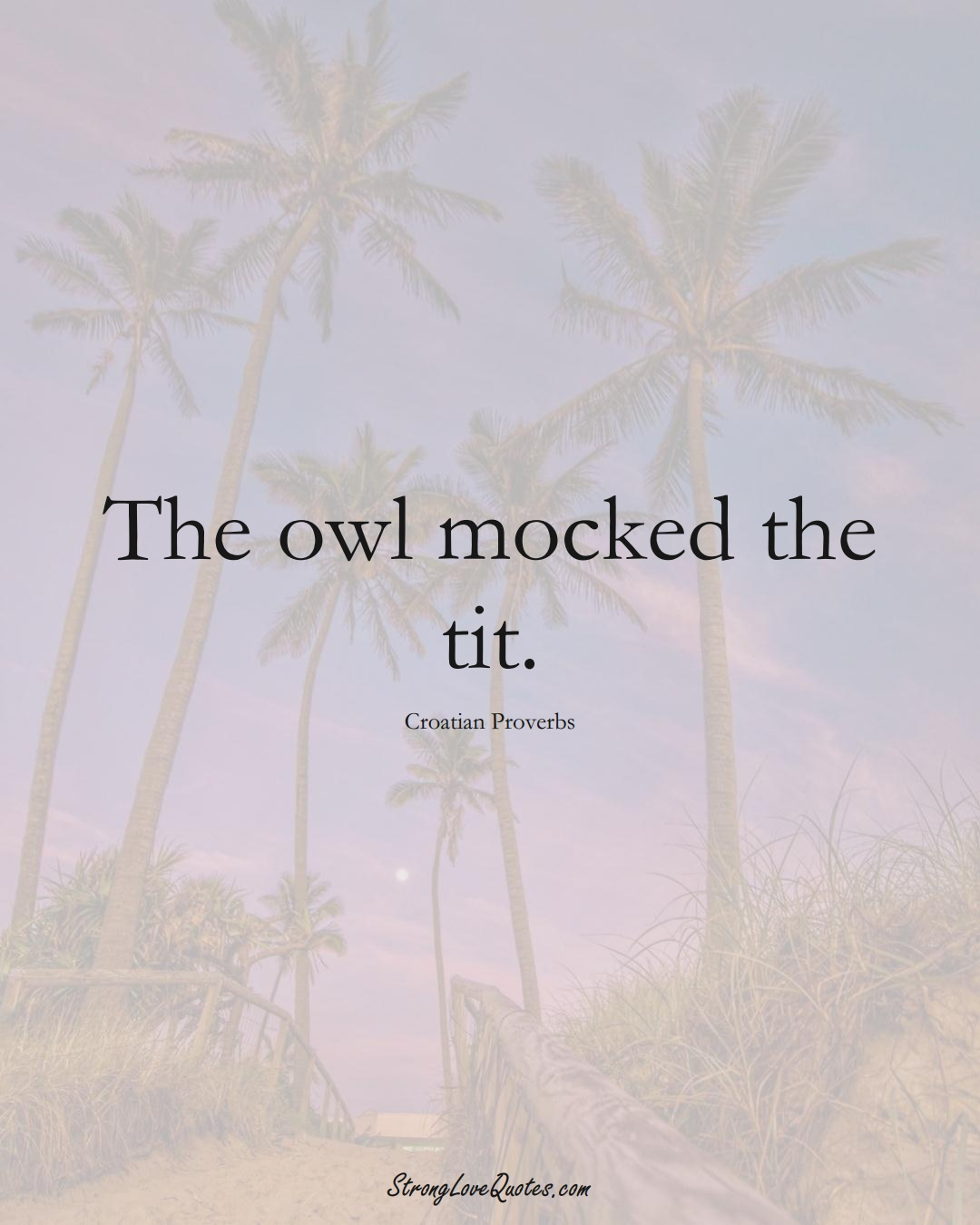 The owl mocked the tit. (Croatian Sayings);  #EuropeanSayings