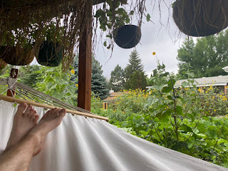View from Hammock