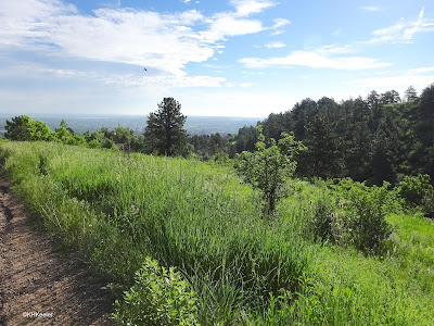 view from Chataqua Park, Boulder
