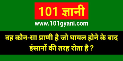 interesting gk in hindi, know all about bear in hindi, bhalu ke bare me puri jankari
