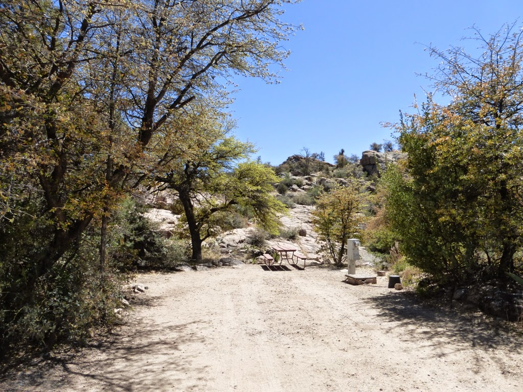 Metamorphosis Road Campground Review Point Of Rocks Rv