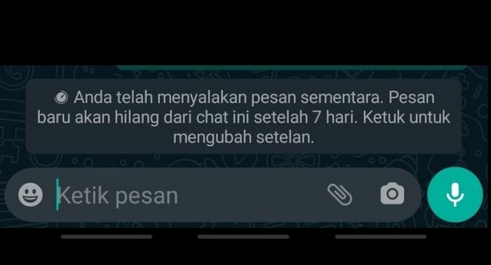 WhatsApp dissapper message