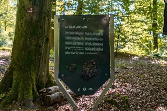 Erzquellweg - Mudersbach - Naturregion Sieg | Erlebnisweg Sieg | Natursteig-Sieg 11