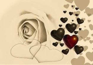 rose e cuori disegnati