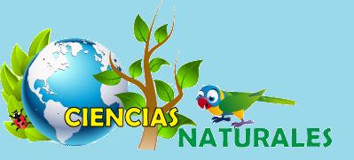 5º Educación Primaria: CIENCIAS NATURALES