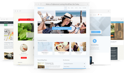 Wordpress Responsive Themes