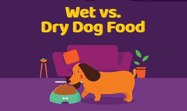 Wet vs Dry Dog Food