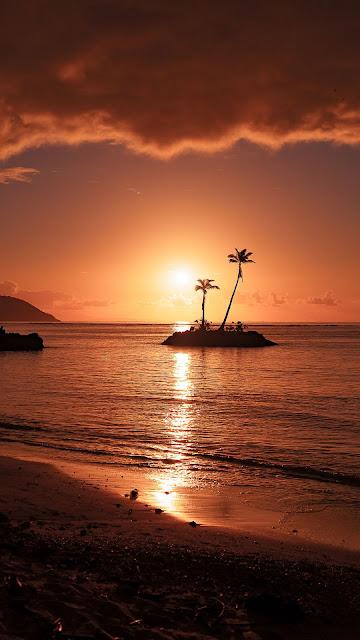 HD wallpaper island, sea, palm trees, beach, sunset