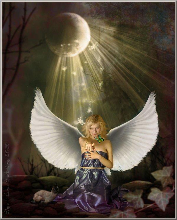 Cantinho de Imagens da Guerreira: | Anjos e Arcanjos |