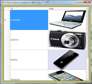 c# bind datagridview with images