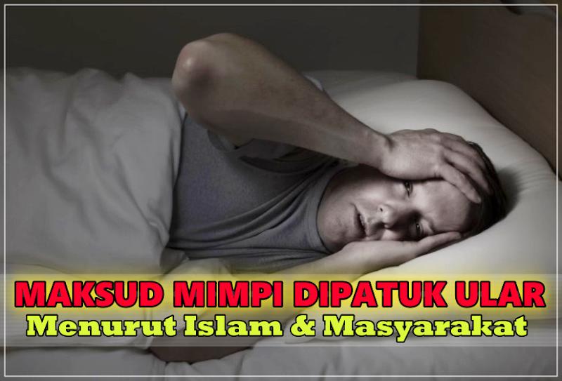 Mimpi Dipatuk Ular Menurut Islam, Maksud Baik Ke Buruk Ni?